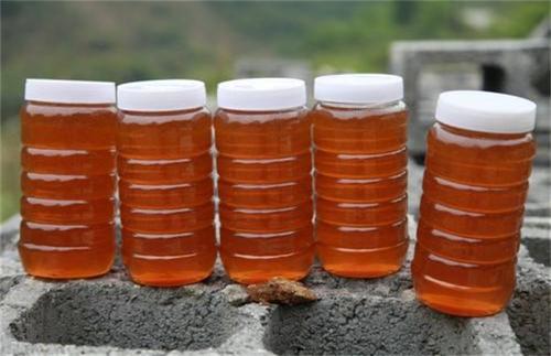 真正的土蜂蜜多少钱?如何分辨真假?